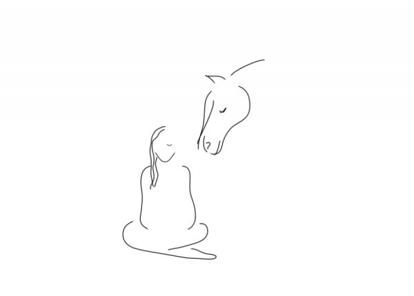 Clickertraining mit Pferden