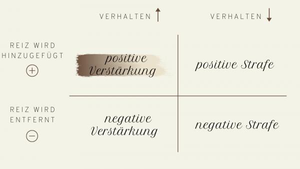 Positive Verstärkung gleich positive Emotionen?